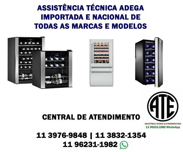Assistência técnica adega